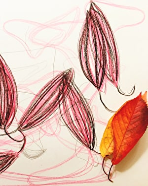 Introduction to Therapeutic Form Drawing
