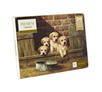 Creative Tops Labrador Puppies Pack Of 6 Premium Placemats