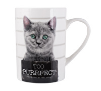 Creative Tops Too Purrfect Tall Can Mug