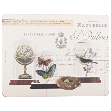 Creative Tops Nature Under Glass Pack Of 6 Premium Placemats