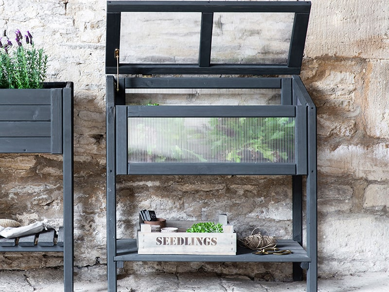Cold Raised Frame in off black planted with salad leaves and set against a cotswold stone wall