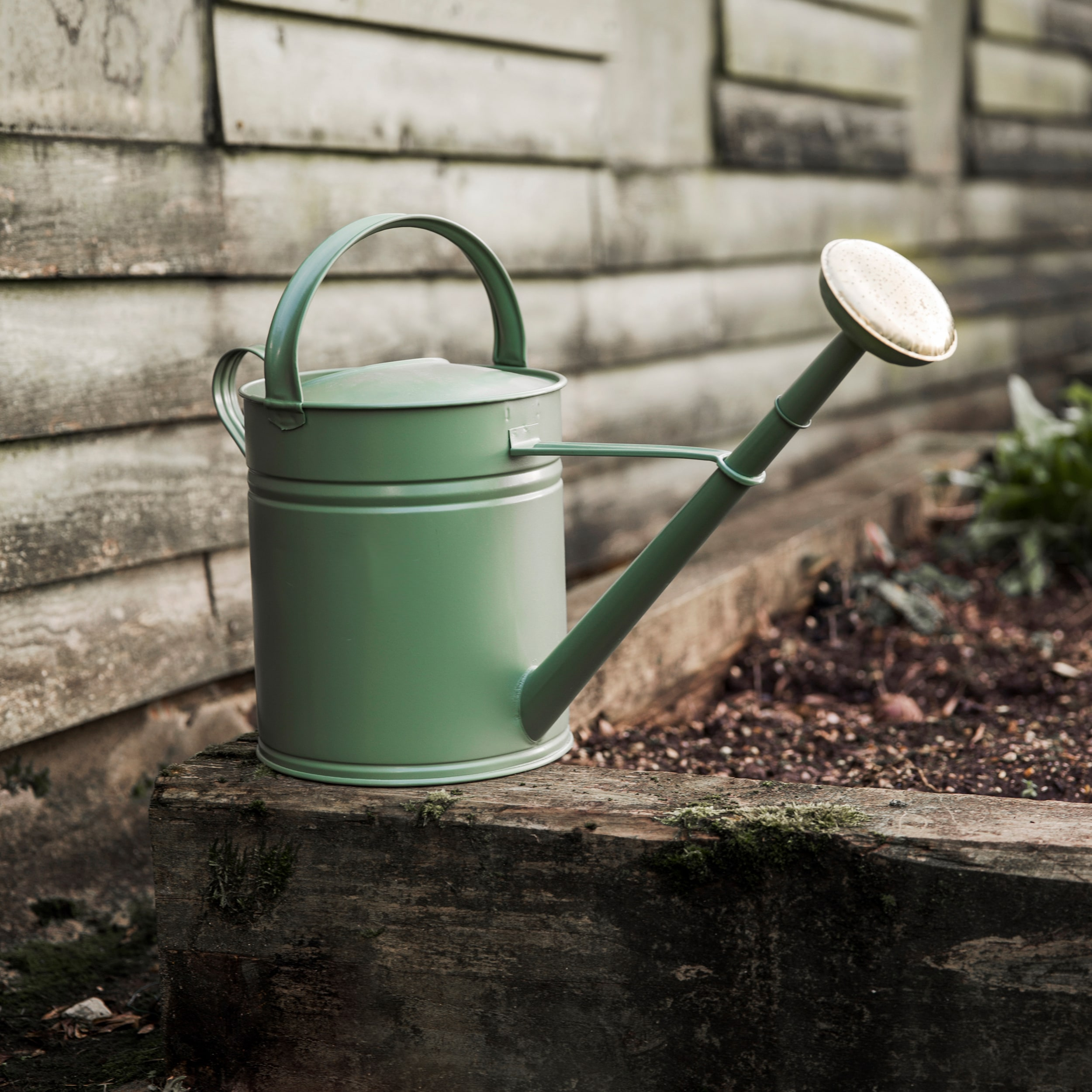 Image of 10L Watering Can