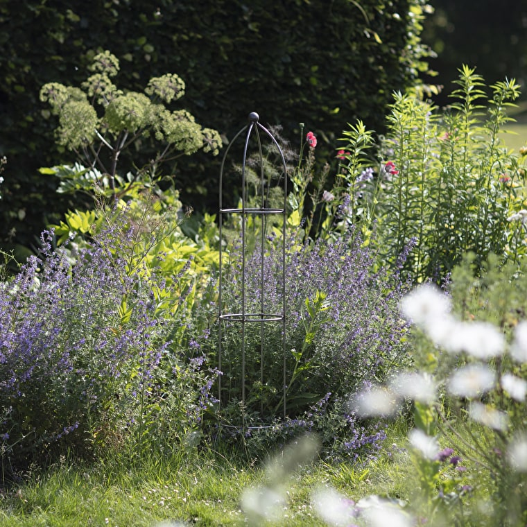 Raw Metal Barrington Obelisk Plant Support in Extra Small, Small, Medium, Large or Extra Large    Garden Trading