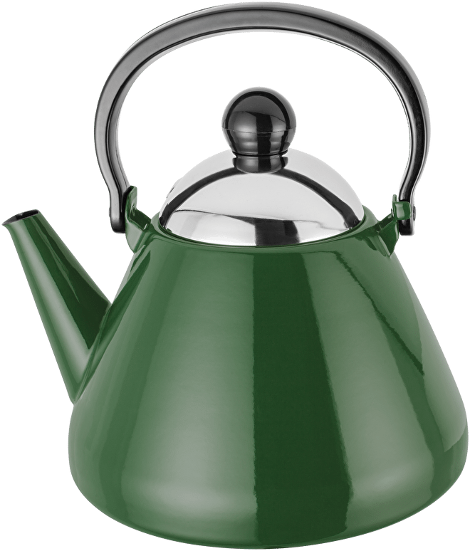 Judge Induction  Stove Top Kettle, enamel