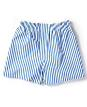 Boxer Shorts - Blue Butcher Stripe
