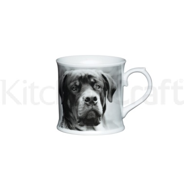 Kitchen Craft Fine Porcelain Labrador Mug