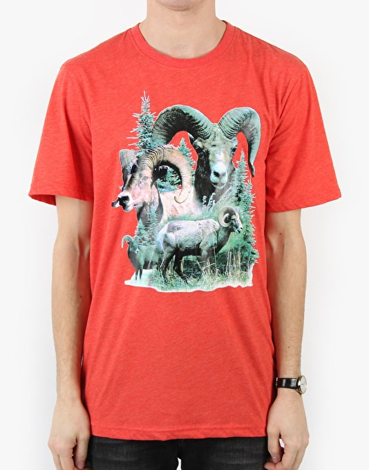 Etnies Wild Out Ram T-Shirt