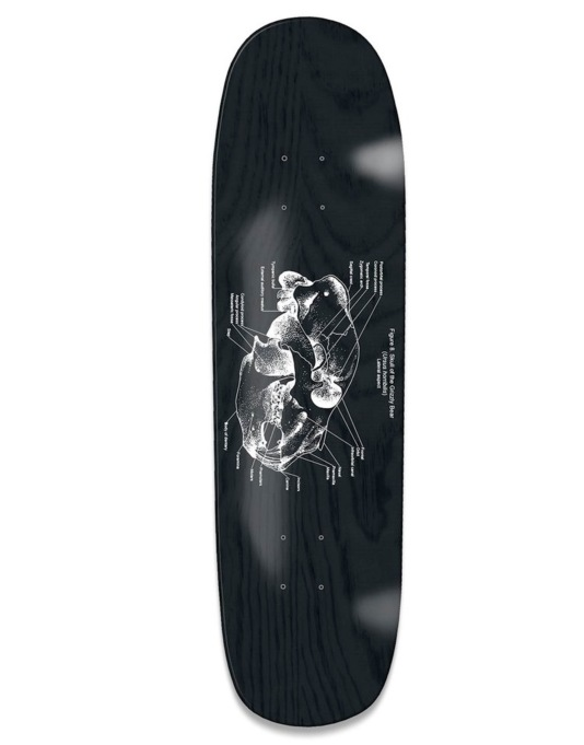 Grizzly Anatomy Cruiser Deck - 8.375""