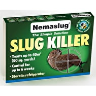 Nemaslug - Biological Slug Control