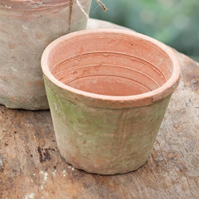 Rustic Terracotta Pot