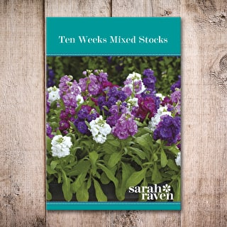 Ten Weeks Mixed Stocks