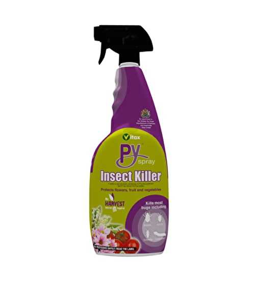 Organic Py Spray for Lily Beetle