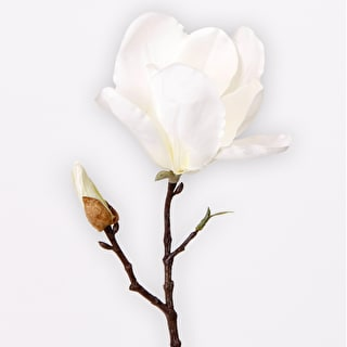 Short Magnolia Spray