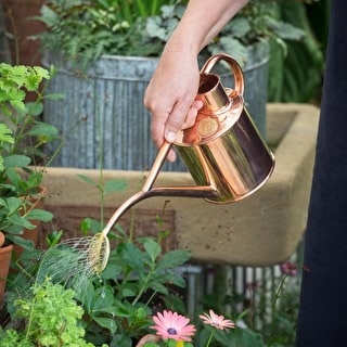 Mini Indoor Watering Can