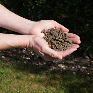 Slug-repelling Wool Pellets
