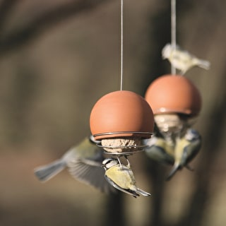 Terracotta Ball Suet Feeder