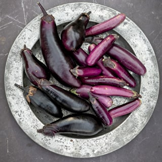 Aubergine 'Slim Jim'