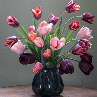 Pewter Tulip Collection