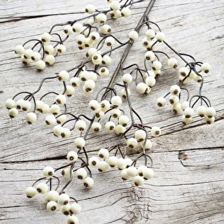 Snowberry Branch
