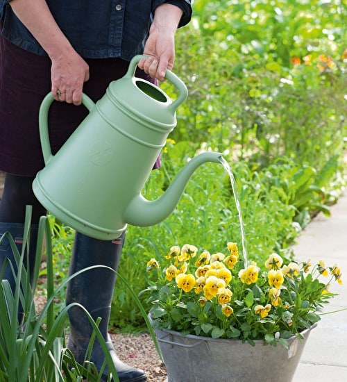 Brilliant Watering Can