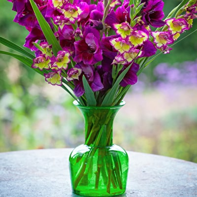 Perfect Vase for Gladioli and Dahlias