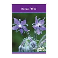 Borage 'Blue'