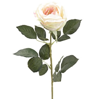 Everlasting Single-headed Rose