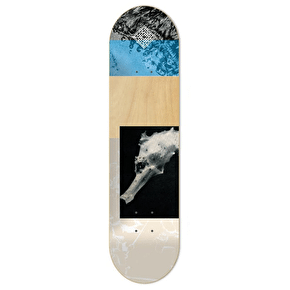 National Skateboard Co Sea Skateboard Deck - 8.125