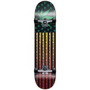 Blind Skateboard - High Roller Rasta 7.75