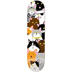 Enjoi Cat Collage Skateboard Deck - Raemers 8