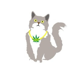 Enjoi Weed Cat Single Sticker