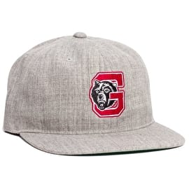 Grizzly North Field Snapback Cap - Grey