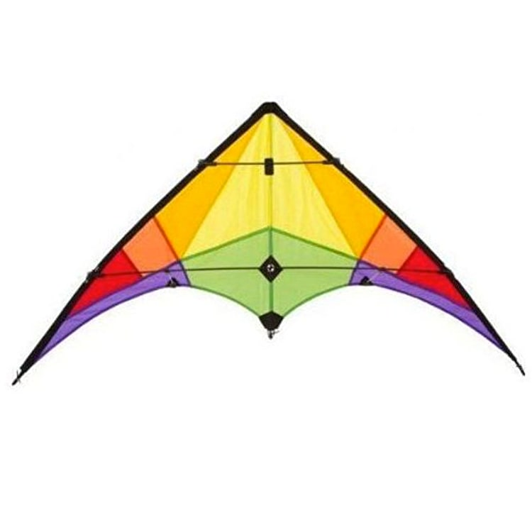 HQ Ecoline Rookie Stunt Kite - Rainbow