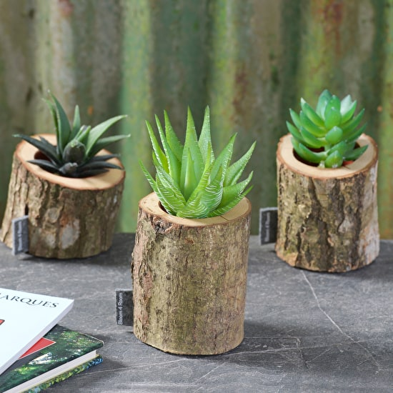A Set Of Three Freestanding Oak Bark Planters