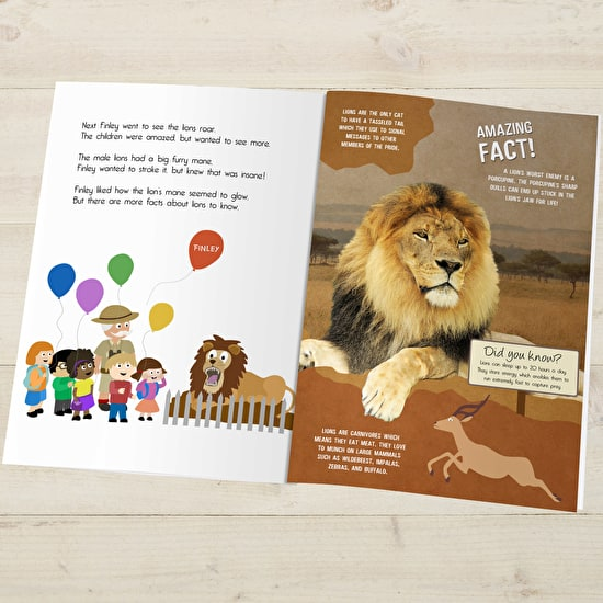 Personalised Day At The Zoo Storybook